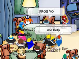 fivestarfrog_1